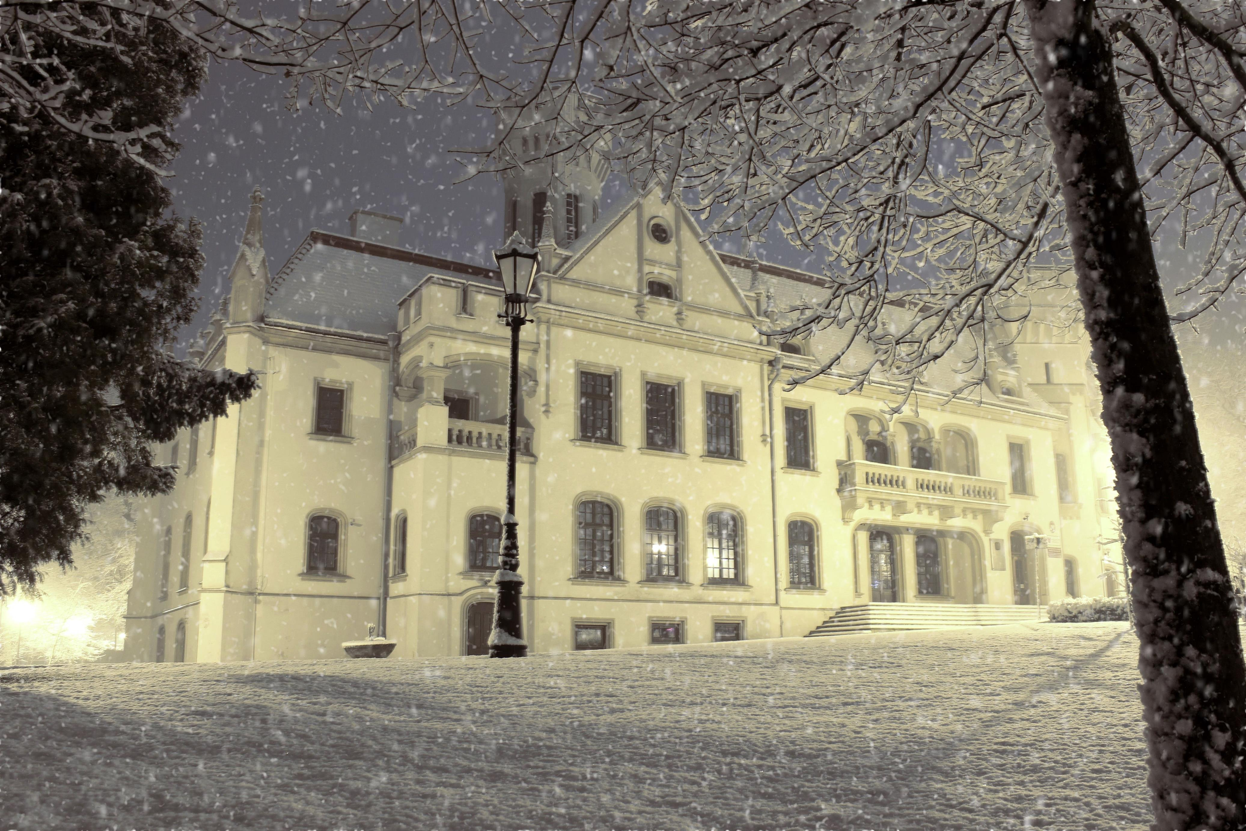Pałac-Sroczyńskich-Anisa