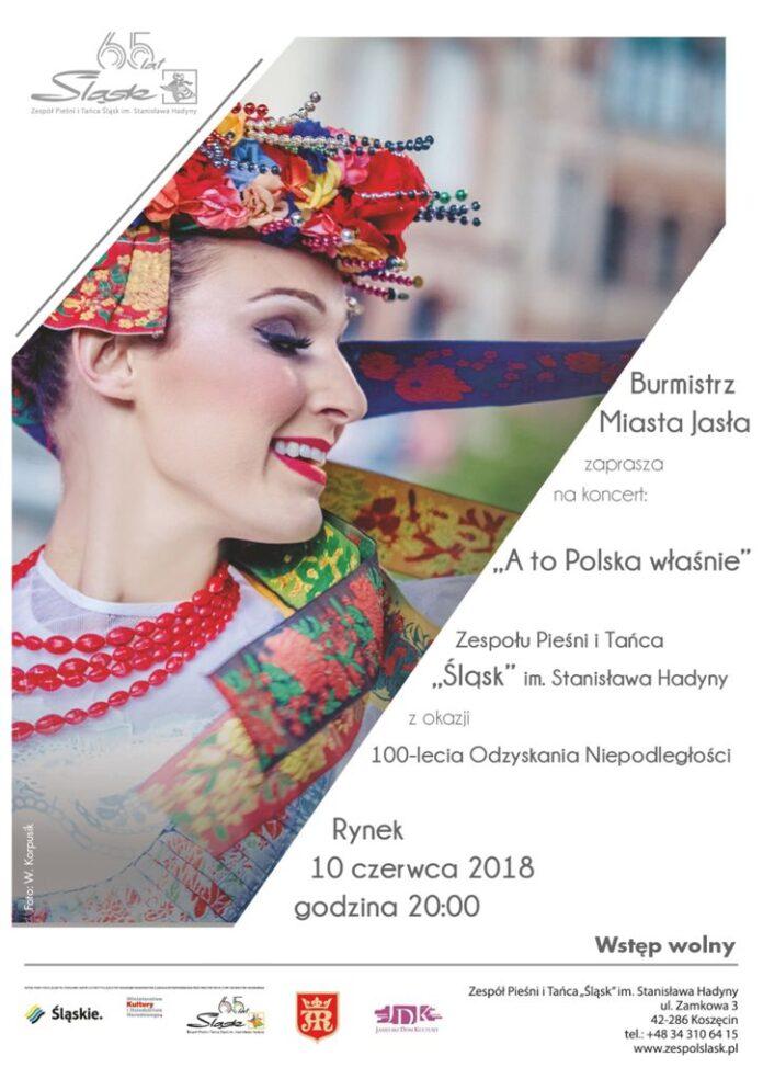 """""""A to Polska właśnie"""" - wydarzenia Jasło"""