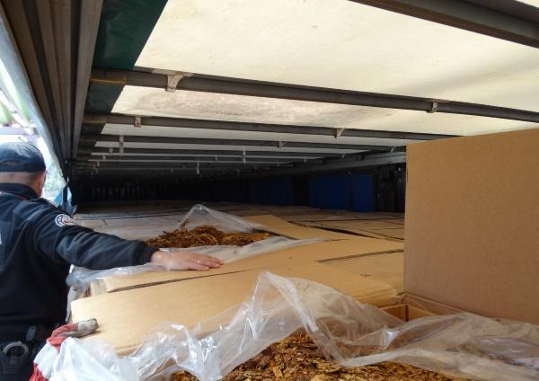Funkcjonariusze KAS z Podkarpacia przechwycili 17 ton suszu tytoniowego