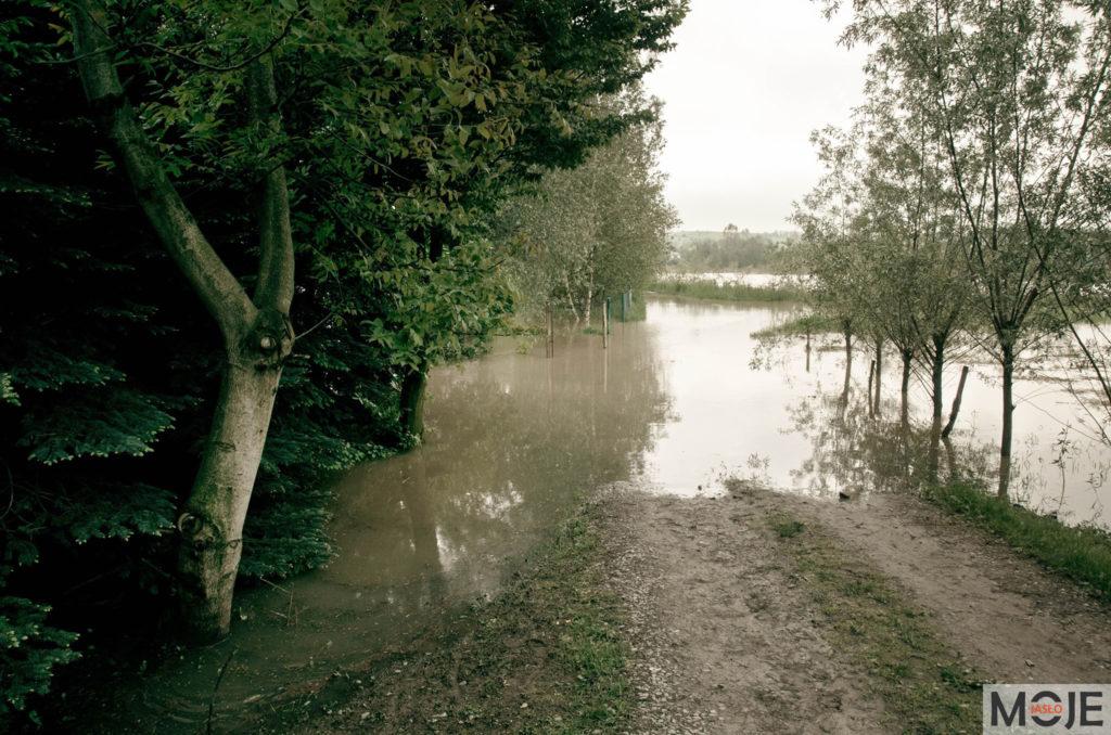 Zagrożenie powodziowe – Jasło 05.2019 r.