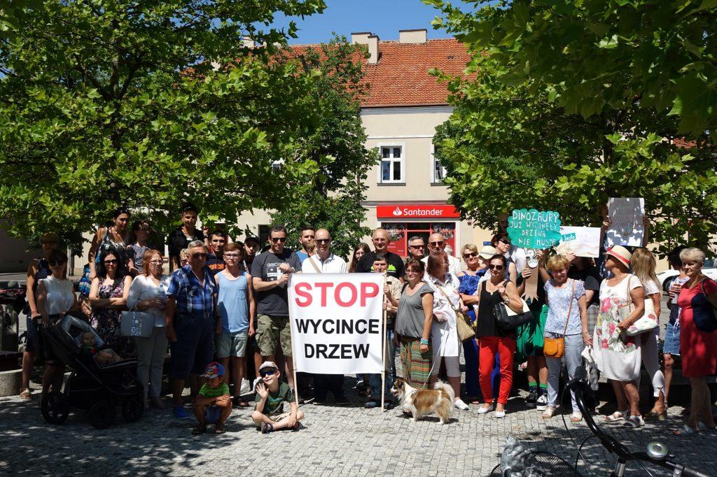 Protest pod Urzędem Miasta przeciwko wycince drzew
