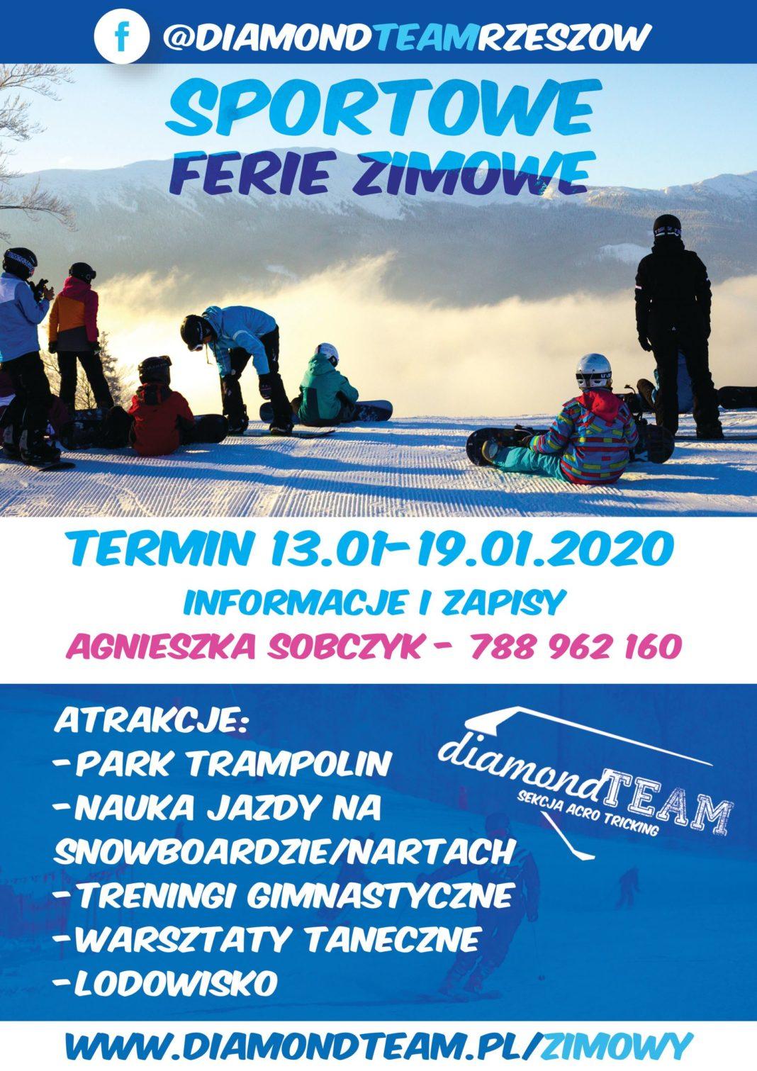 Obóz zimowy Diamond Camp - plakat