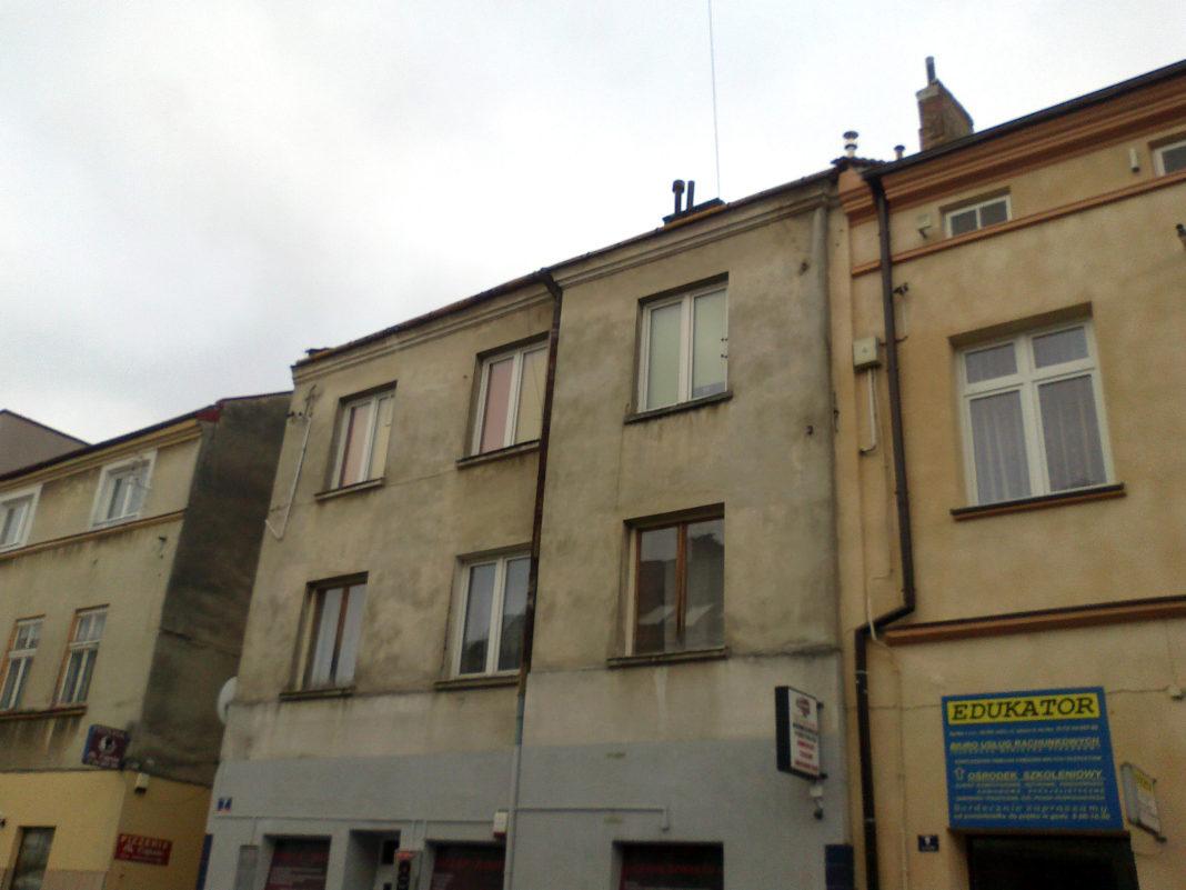 Dzika lokatorka - budynek przy Igielnej w Jaśle