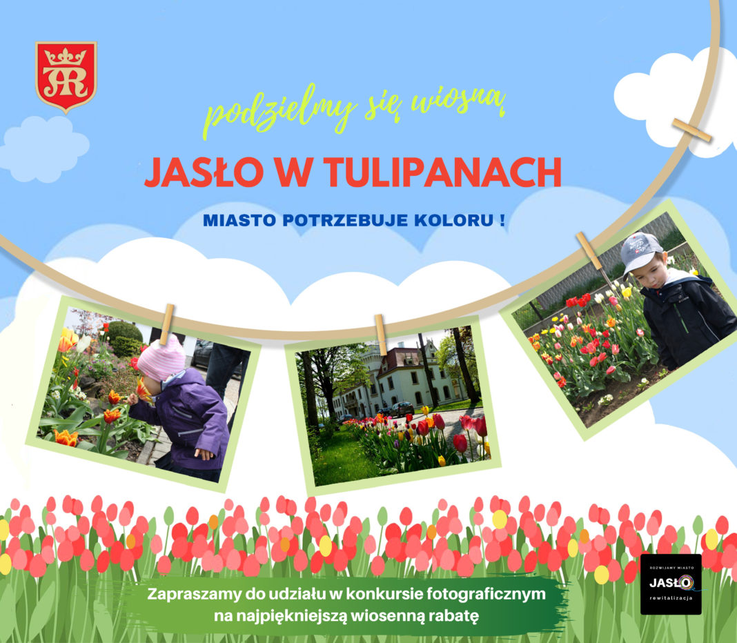 Jasło w tulipanach
