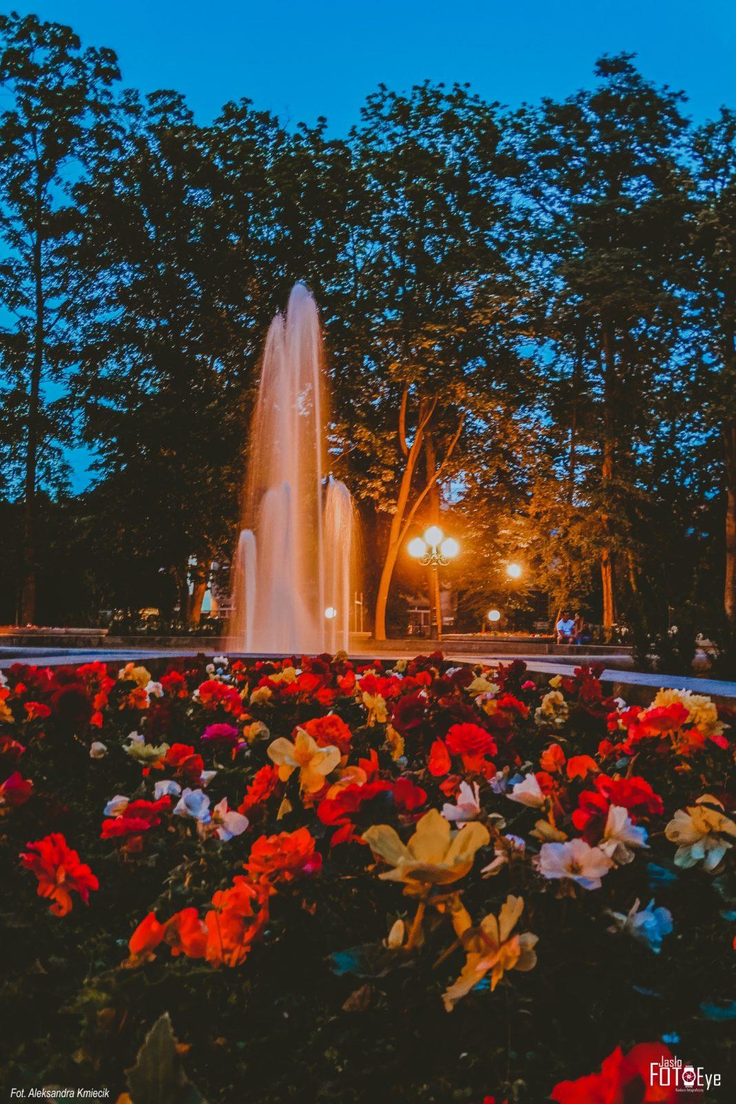 """""""Urokliwy park wieczorem"""" zdjęciem roku według internautów"""