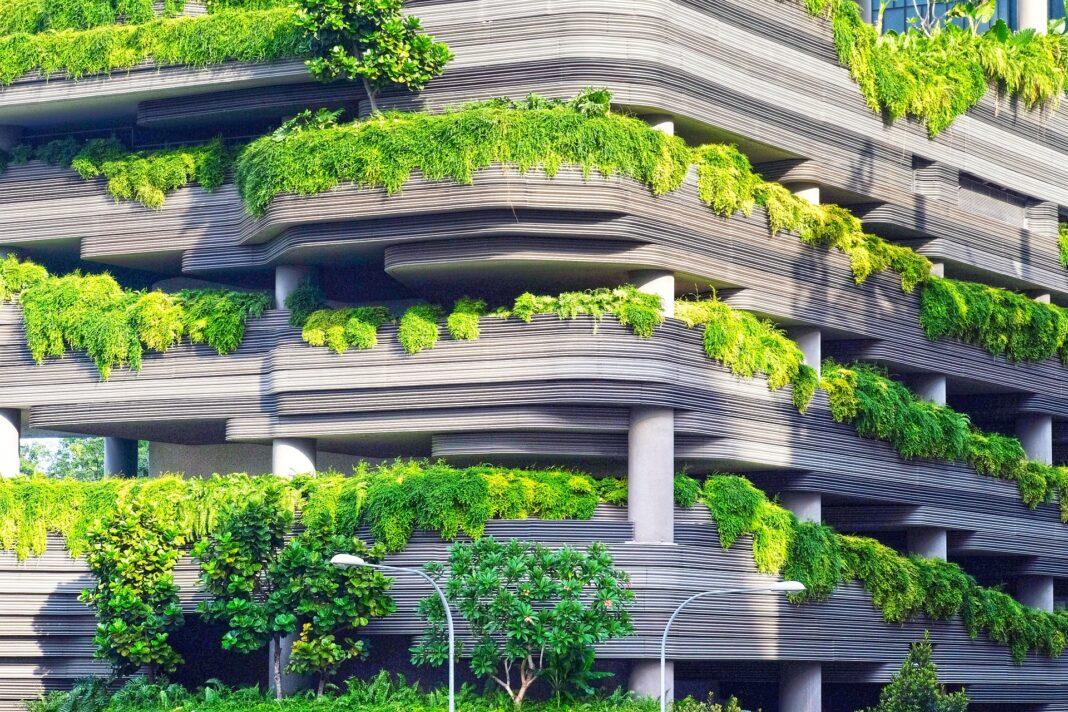 Jak brak roślinności wpływa na nagrzewanie się różnych powierzchni w mieście